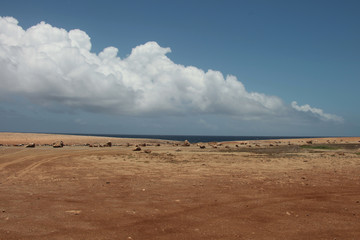 Paesaggio marino con cielo blu e nuvola bianca
