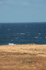 Paesaggio marino con onde, veduta verticale