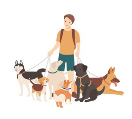 Happy boy walking his purebred dogs on leash. Young smiling guy standing with domestic animals. Cute funny pet owner isolated on white background. Colorful flat cartoon vector illustration.