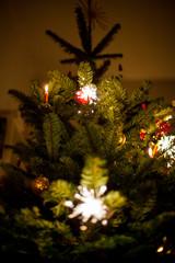 Sparkler and candle on christmas tree. Wunderkerze auf Weihnachtsbaum.