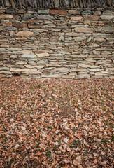 Stone wall with greenery. Steinmauer mit Laub.
