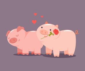 Pigs couple with a rose and hearts. Valentine Day vector cartoon cute animal character isolated on background.