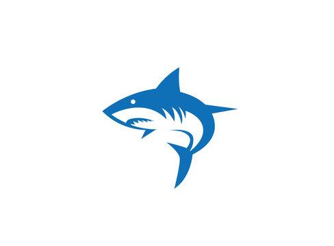 Shark Fish Logo
