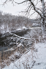 Winter forest river in snow