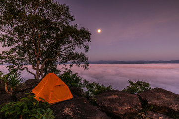 The traveler's orange tent on high mountain and sea of mist.