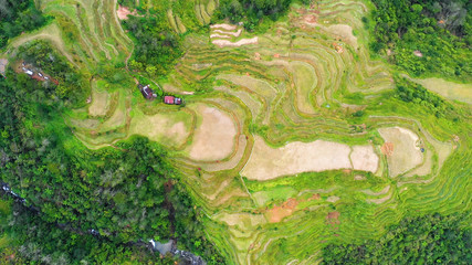 rice terraces in aerial view, Philippines