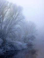 Nebel mit Raureif am Fluss