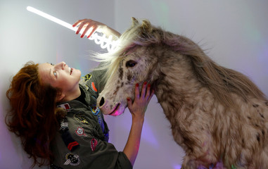 """Artist and naturalist Stephanie Barthes adjusts a neon lamp on a stuffed pony as she works on her art creation called """"Poney-Licorne"""" at her workshop in Bordeaux"""