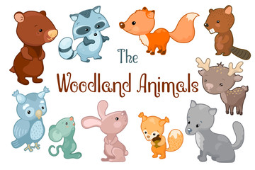 Woodland animals vector clipart on white background. Cute vector illustrations of bear, beaver, fox, rabbit, deer.