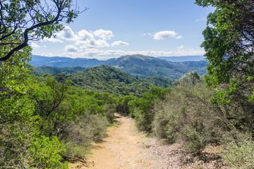 Trail in Sugarloaf Ridge State Park, Sonoma County, California