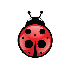 ladybug icon in red vector illustration