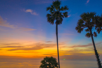 sunset above sugar palm around Promthep cape viewpoint Phuket Thailand