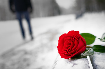 Red rose flower laying on the snow covered bench in a winter park and walking away man silhouette. Failed date or broken heart concept.