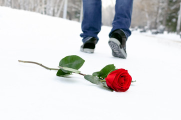 Red rose flower laying on the snow covered road in a winter park and walking away man silhouette. Failed date or broken heart concept.