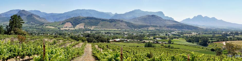 Cape Winelands - Franschhoek Valley