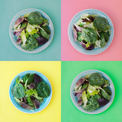 Collage of fresh mixed green salad in round plate, colorful background. Healthy food, diet concept. Top view, square image.