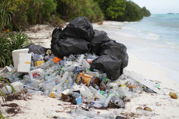 Plastic garbage on tropical beach among mangrooves by sea water