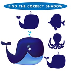 Blue whale Find the correct shadow kids educational puzzle game. The Theme Of Mermaids vector illustration