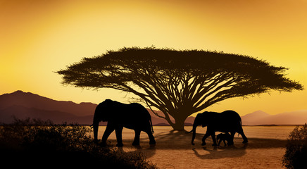 Silhouettes of african with elephant animals