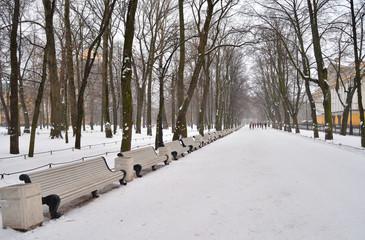 Alley in Alexander Garden at winter.