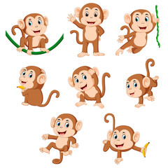 the collection of the monkey playing on the green rope with the different posing