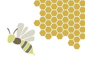 ハチと蜂の巣