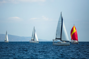 Wall Mural - Sailing luxury boats participate in yachting regatta.