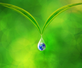 Earth in water drop reflection under green leaf, Together We Can Save Our World Concept, Elements of this image furnished by NASA