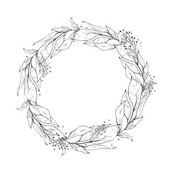 Sketch wreath plant leaves, drawing nature set. Graphic floral botanical line painted herb.