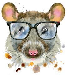 Watercolor portrait of rat with big black glasses