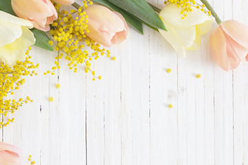 tulips and mimosa on white wooden background
