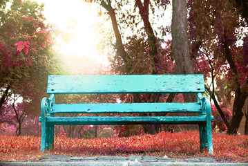 Bench in the park in autumn season with background sunraise sky