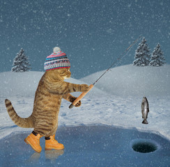 The cat in a knitted hat and boots catches fish on ice of a frozen lake in the forest.