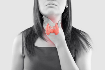 The illustration of the thyroid is on the woman throat, Human thyroid gland control. Sore throat of a people against a gray background. The concept of healthcare and medicine.