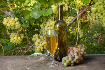 Glass of white wine and empty glass, bottle, bunch of grapes on old wooden table against vineyard..