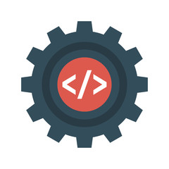 development   coding   script