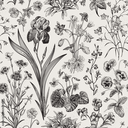 Seamless floral pattern  Vector vintage botanical illustration