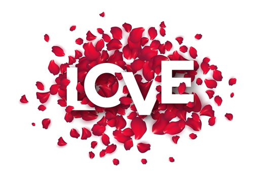 The word love is written with rose petals on a white background. Vector illustration