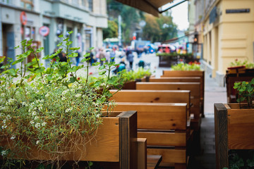 A street cafe decorated with green plants