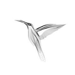 Small bird caliber vector illustration