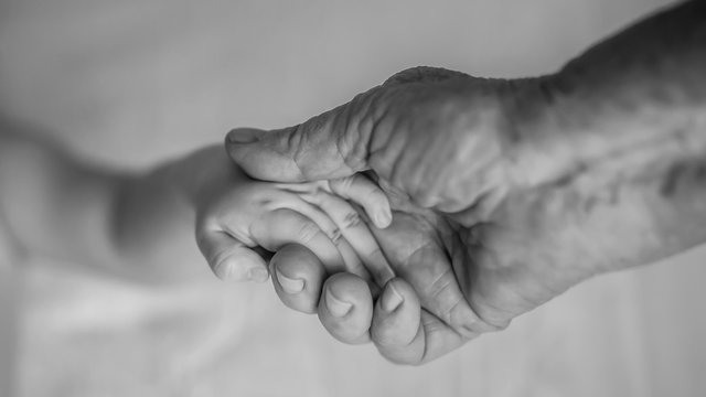old grandmother hands holding newborn hands, fourth generation family life. black and white shot, the concept of a family and a new life into a selective focus