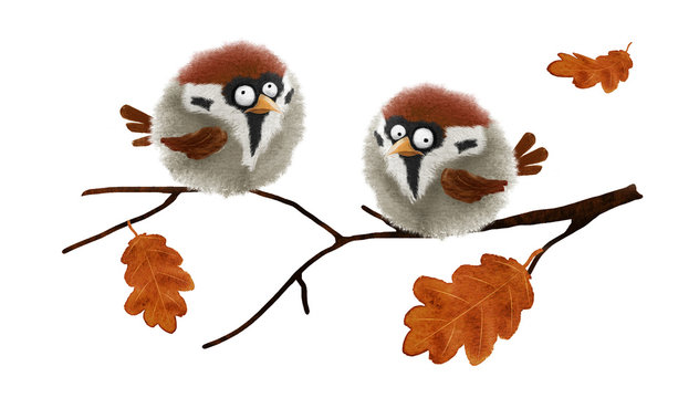 Two funny fluffy sparrows. Hand drawn watercolor