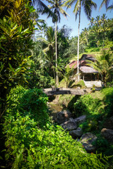 Bridge in Gunung Kawi temple, Ubud, Bali, Indonesia