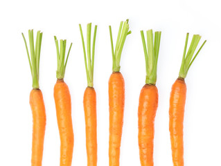 fresh baby carrot isolated on white background.