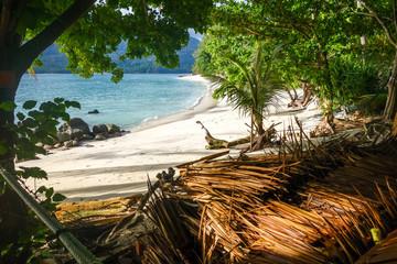 Tropical beach in Koh Lipe, Thailand