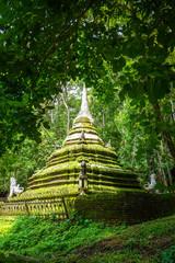 Wat Palad temple stupa, Chiang Mai, Thailand