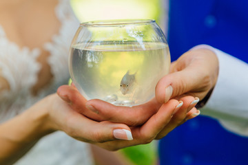 Hands of the bride and groom holding small aquarium with fish and wedding rings inside.