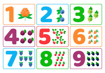 Set. Vector illustration. Count for kids. Berries. Color numbers. The study of mathematics for children of kindergarten, preschool age.