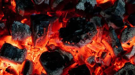 Burning embers close up