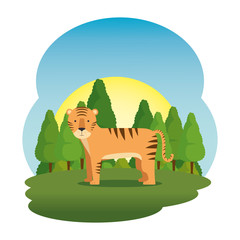 cute tiger in the field scene